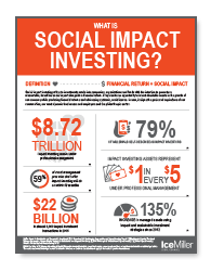 Social Impact Investing Infographic